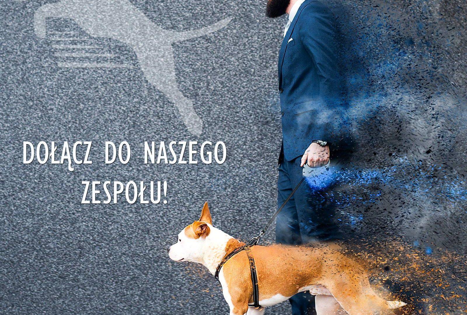 Game Dog Suplementy Dla Psów Profesjonalne Wsparcie Twojego Psa